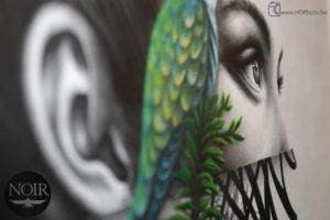 Peintre muraliste